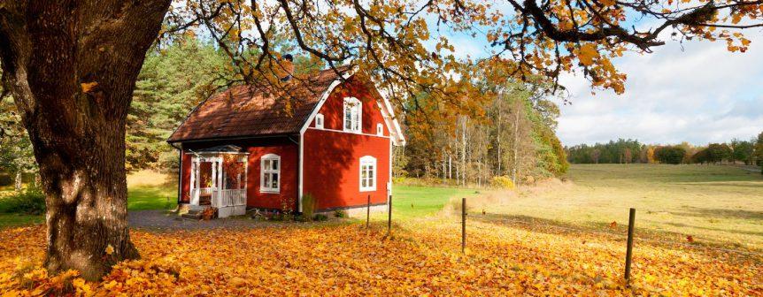 fall house sitting